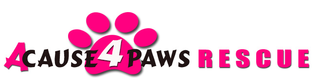 a Cause 4 Paws